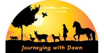 Journeying with Dawn